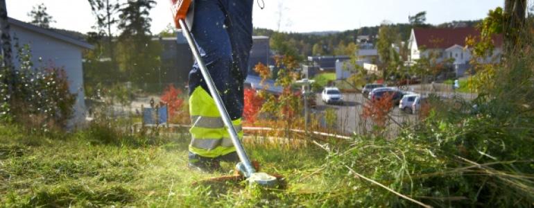Bosmaaiers | Tuinmachine-Service Leo de Visser